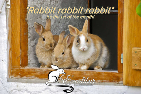 "Have you said ""Rabbit, rabbit, rabbit"" yet? 3 rabbits sitting together."