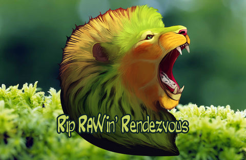 Let's have a 'RIP RAWIN' RENDEZVOUS' with healthy raw food.