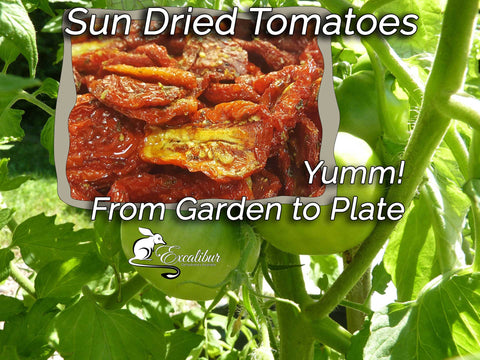 Sun Dried Tomatoes - from garden to plate.