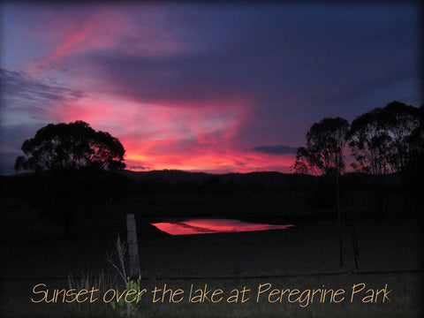Sunset over the lake at Peregrine Park.