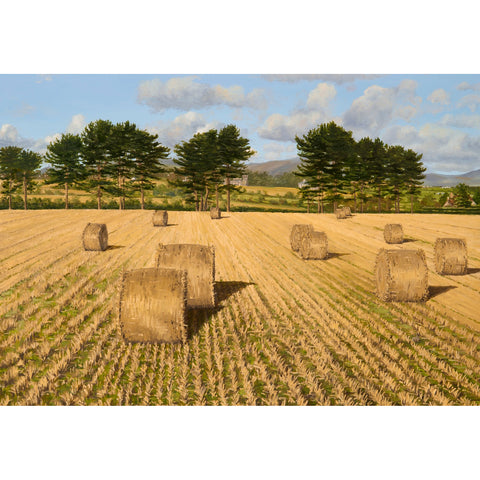 Hay bales at Great Meadow Greetings Card