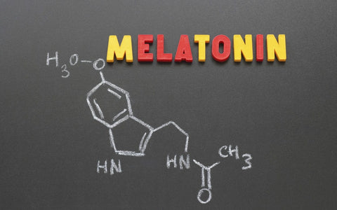 Melatonin Work