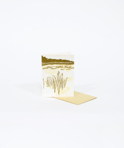 Leatherleaf Bog Greeting Card