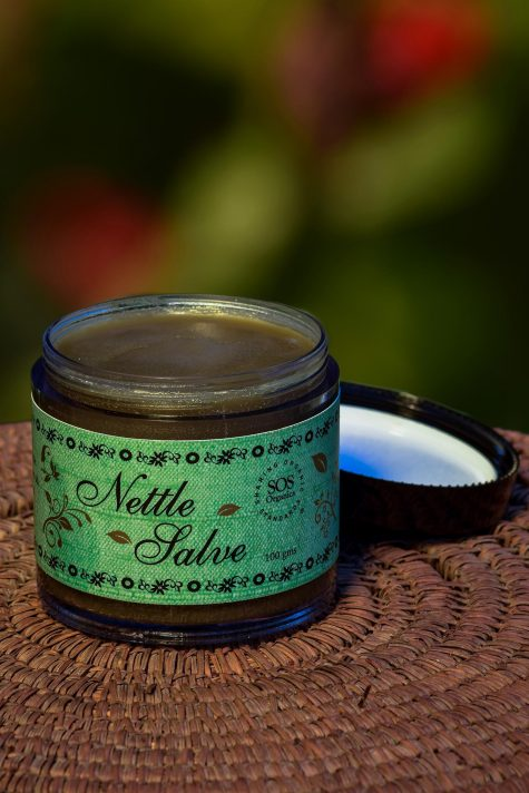 HIMALAYAN NETTLE SALVE 100GM by SOS - Vnya, Of the Wild