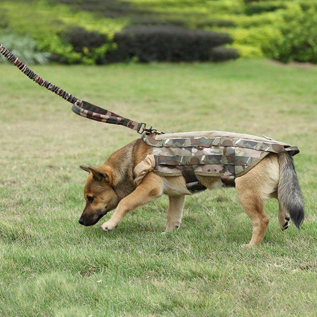 Tactical Dog Rope Training Dog Leash Traction Rope - Pet26072020