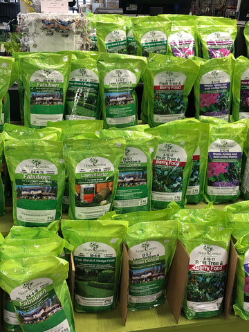 Evergreen Fertilizer 18-4-8