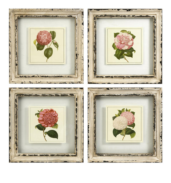Botanical Framed Art - Wall Art Flowers Pictures Home Decor