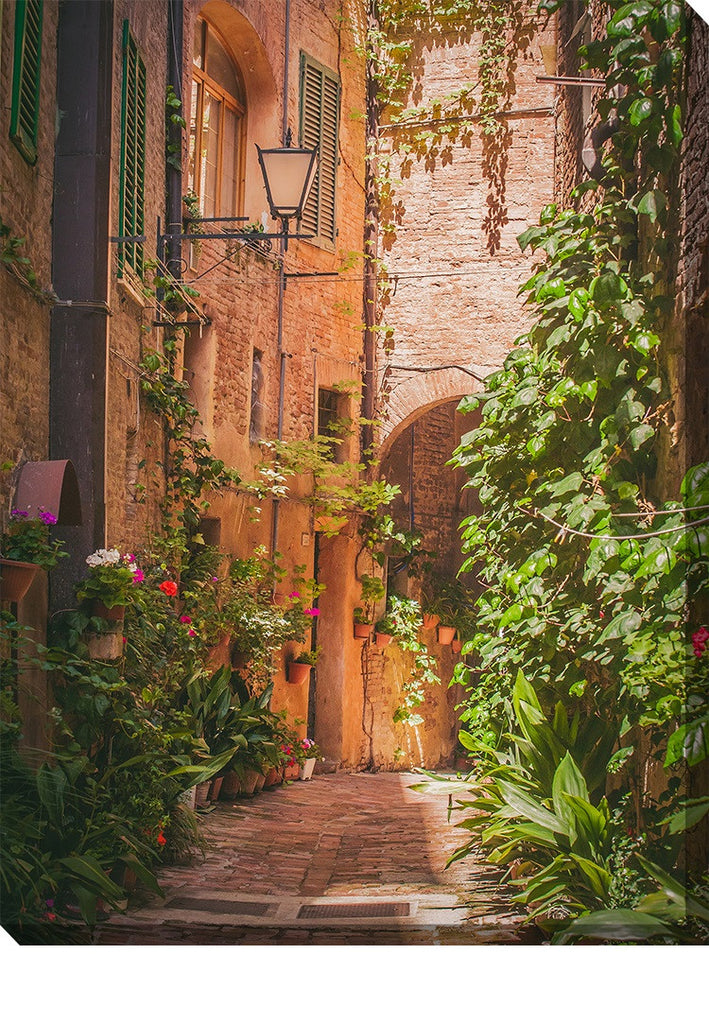 Hidden Alley Outdoor Canvas Art - Premier Home & Gifts