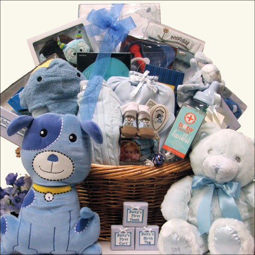 Grand Welcome Baby Boy Baby Gift Basket