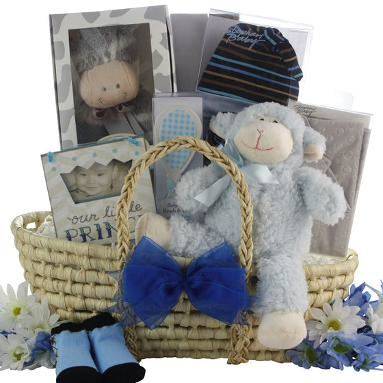 Bouncing Baby Boy Baby Gift Basket - Premier Home & Gifts