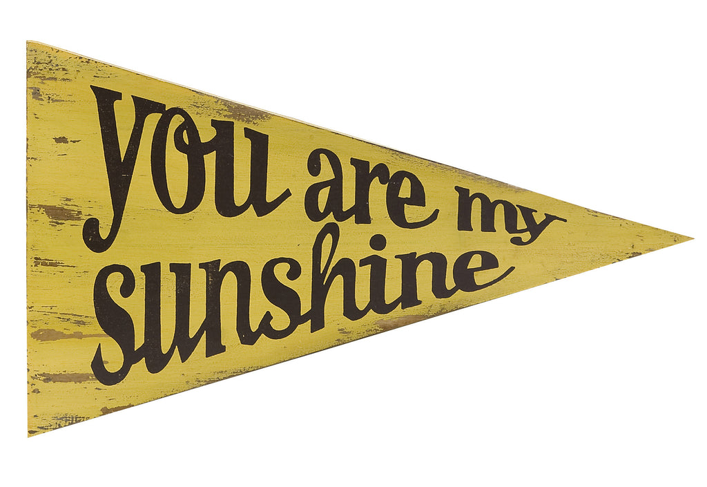 You Are My Sunshine Pennant