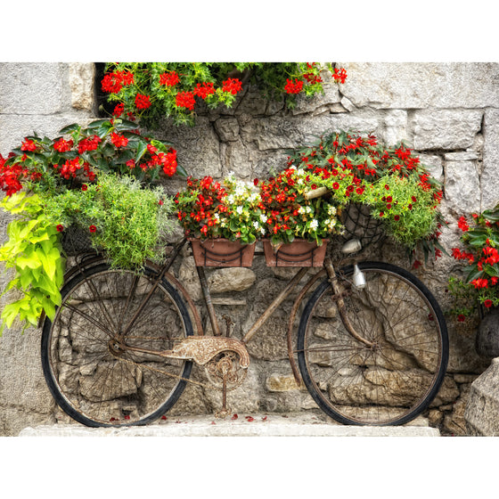 Rusty Bicyclette Outdoor Canvas Art - Premier Home & Gifts