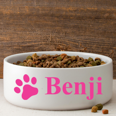 Dog Bowl - Personalized - 4 Designs - Premier Home & Gifts