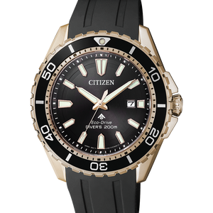 Citizen Promaster Eco-Drive Sort