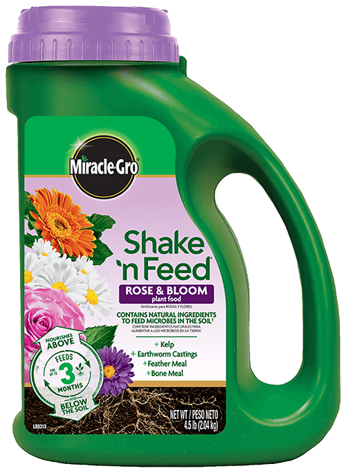 Miracle-Gro® Shake 'n Feed® Rose & Bloom Plant Food