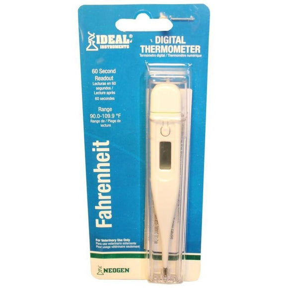 DIGITAL THERMOMETER WITH HARD PLASTIC CASE