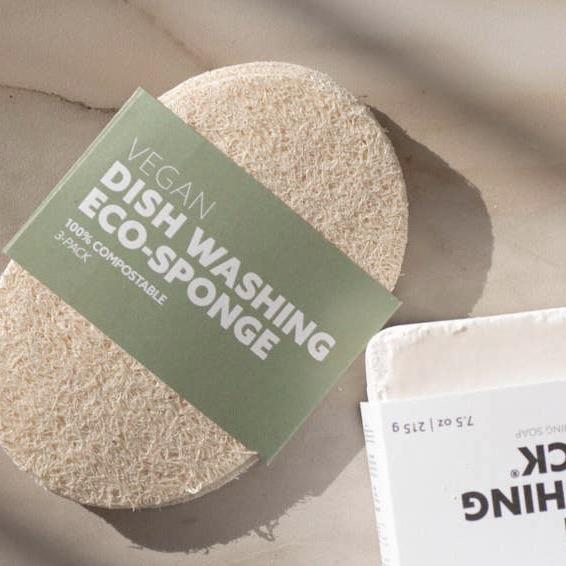 Vegan Dishwash Sponge
