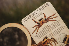 Load image into Gallery viewer, JUMPING SPIDER FUN FACTS TILE plus COLOUR IN PRINTABLE