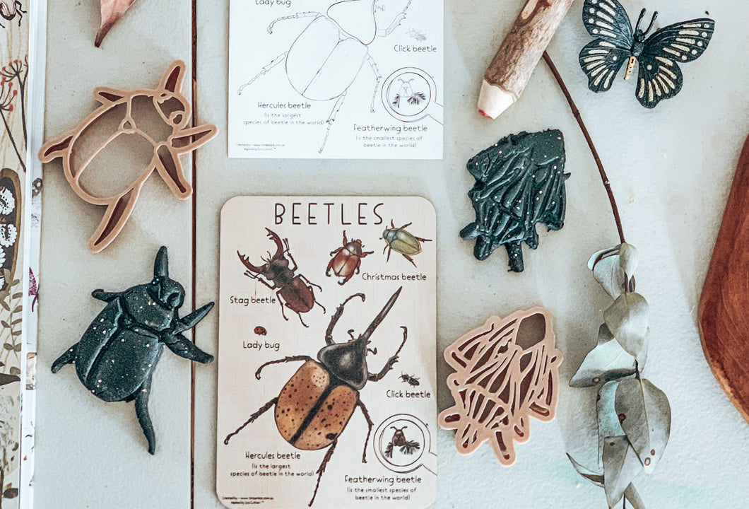 BEETLES PACK - TIMBER TILE, COLOUR IN PRINTABLE PLUS ECO CUTTER ™