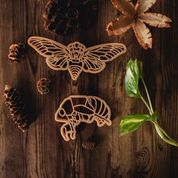 ECO CUTTER ™ Cicada (Set of 2)