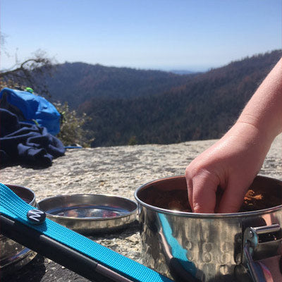 goTenna by a pot at sequoia national park