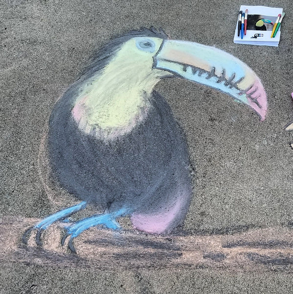 TOUCAN Be A Chalk Artist!