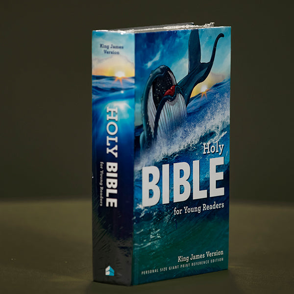 KJV - Bible for young readers Hard cover