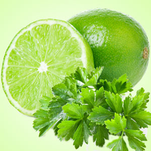 Load image into Gallery viewer, Lime & Cilantro 6oz tin Fundraiser candle