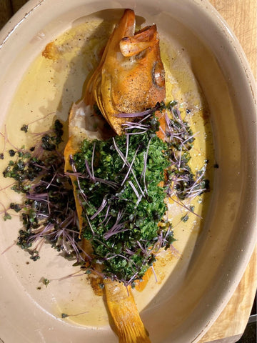 Herb Grilled Red Grouper