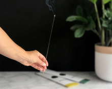 Load image into Gallery viewer, Rainier Incense from Botanica