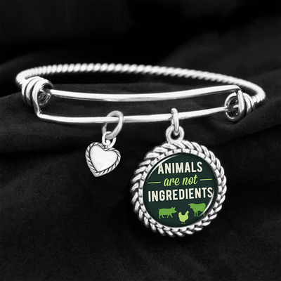 Animals Are Not Ingredients Charm Bracelet