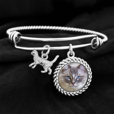 Ragdoll Beauty Cat Charm Bracelet