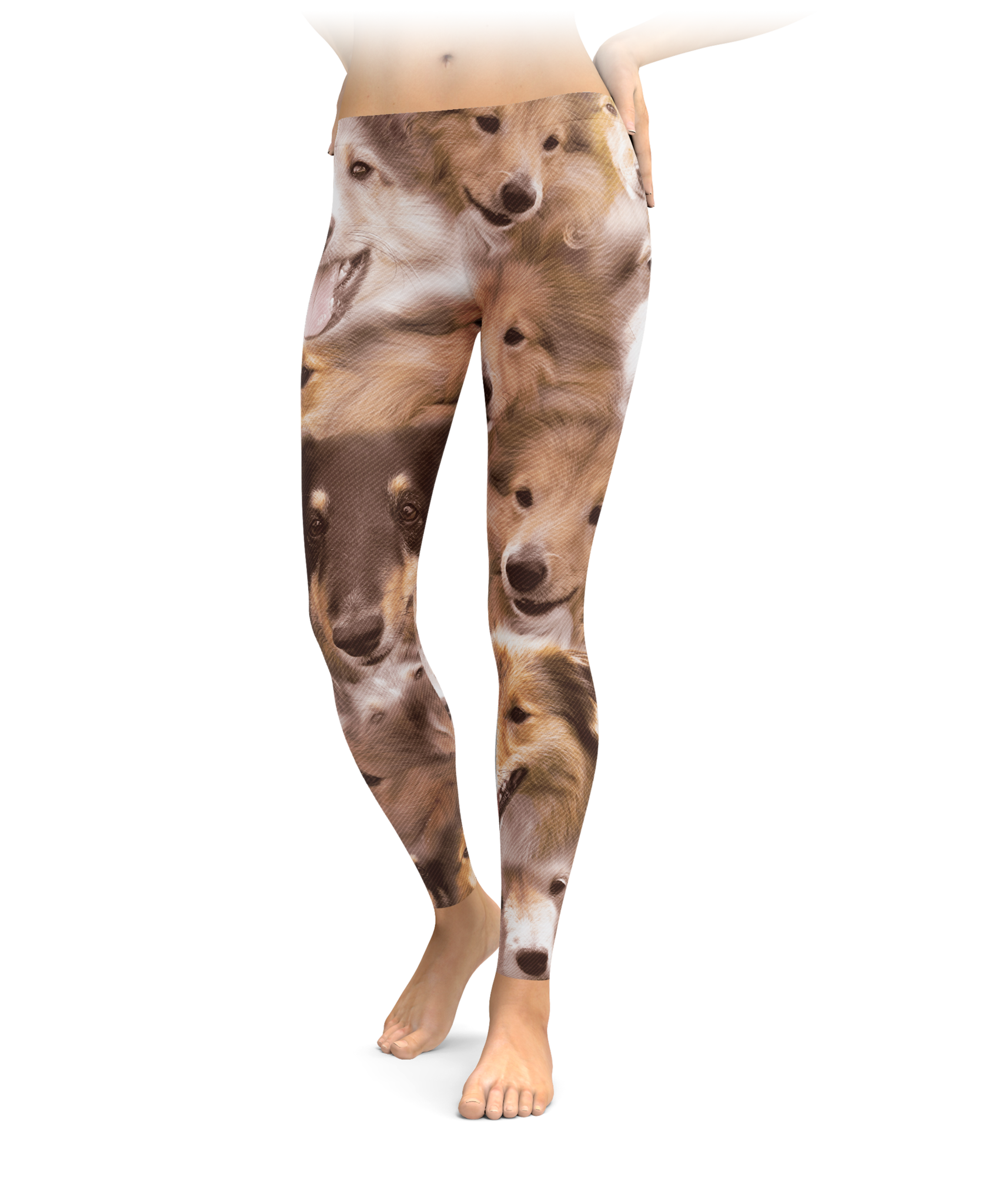 Shelties on shelties on shetland sheepdogs leggings nvjuhfo Images