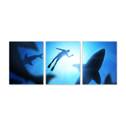 16x20 - Swimming With Sharks Canvas Wall Art - Set Of 3