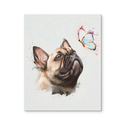 8x10 - French Bulldog & Butterfly Canvas Wall Art