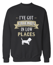 I've Got Friends in Low Places - Country Basset Hound