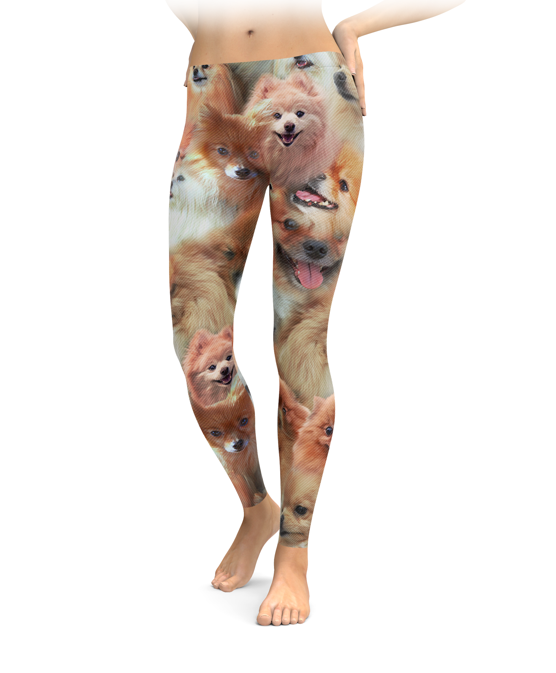 Pomeranians on Pomeranians on Pomeranians Leggings