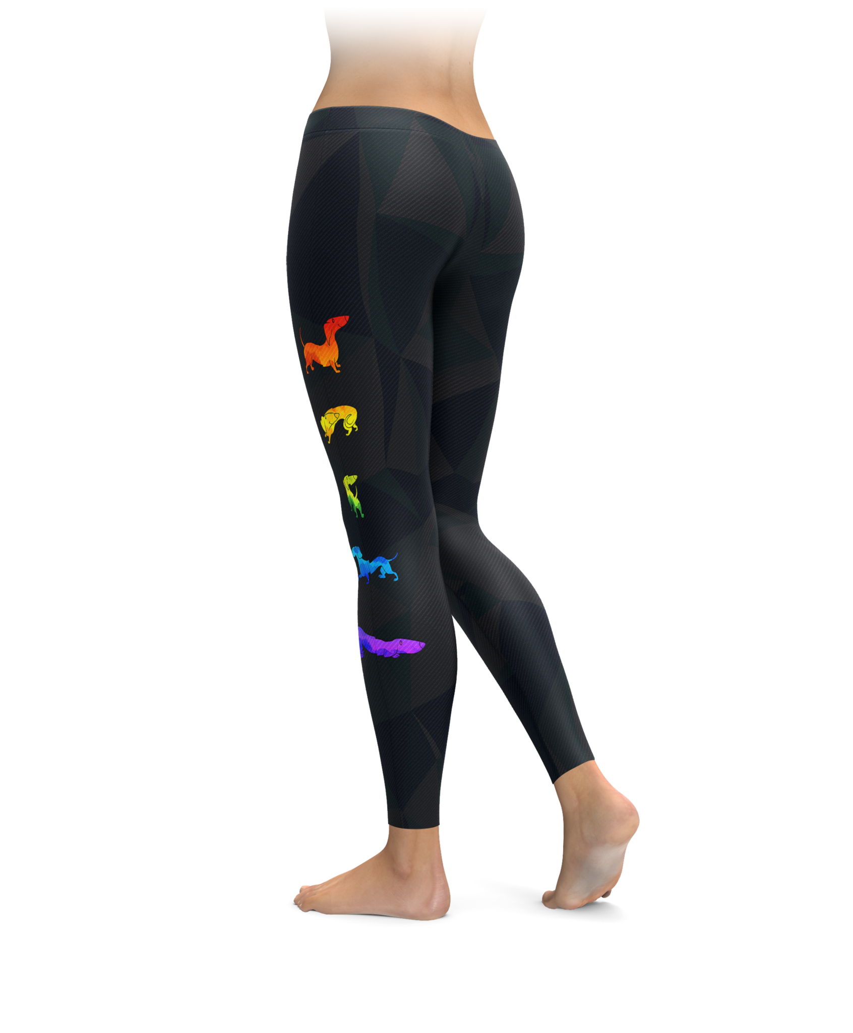 Rainbow Doxie Leggings