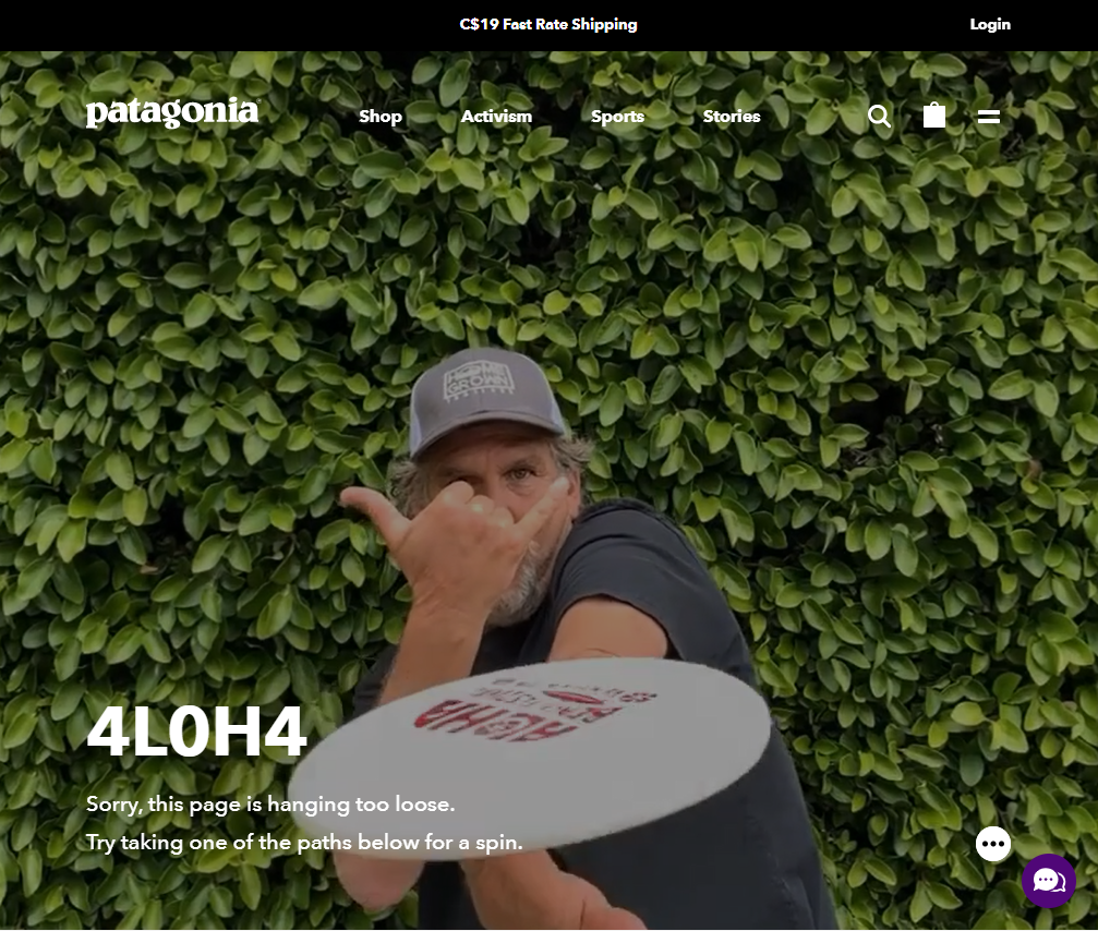 Patagonia 404 Page Example