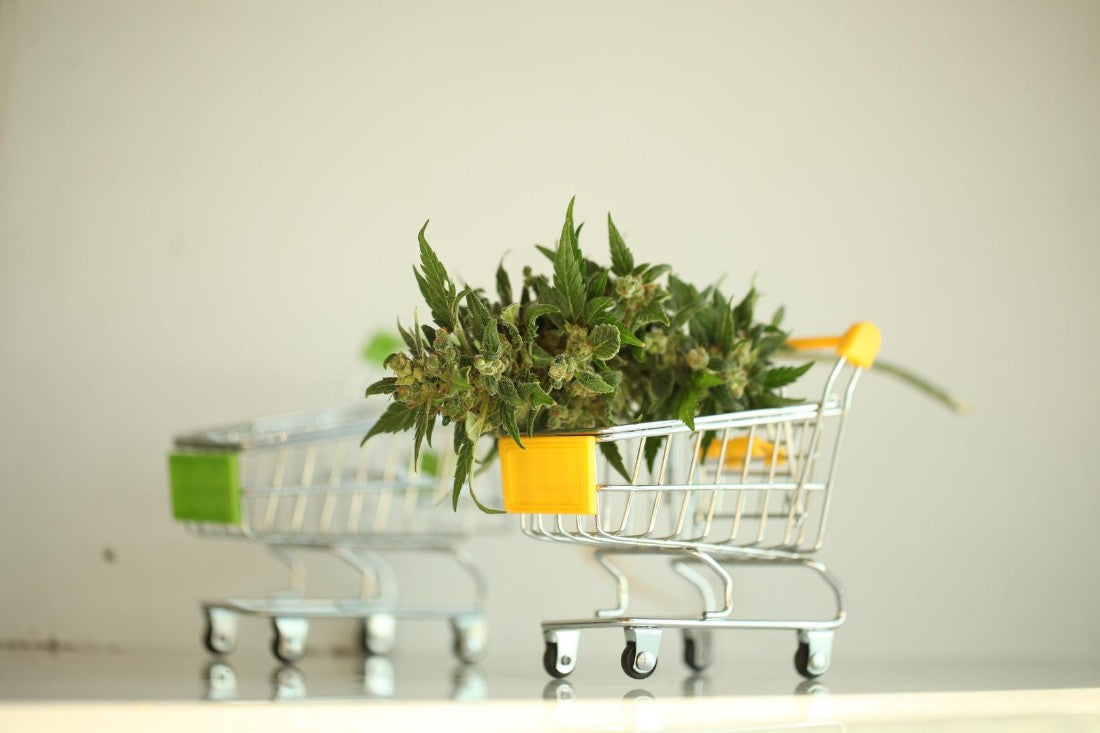 Marketing Cannabis Online Can Be Tricky & Complicated