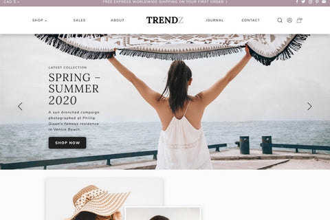 Shopify Ecommerce Theme Cost