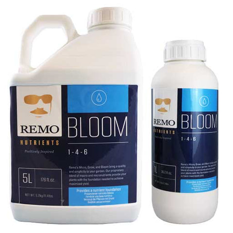 Bloom - REMO