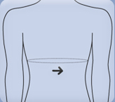 Back Measurement