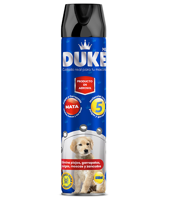 DUKE 440ml en Spray