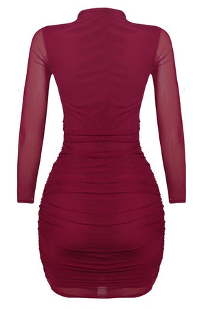 Mesh Long Sleeve Holiday Dress