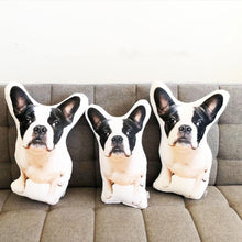 Load image into Gallery viewer, Custom Cute Pet Pillow, create your own cute pillow, surprise gift