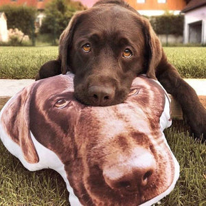 Custom Cute Pet Pillow, create your own cute pillow, surprise gift