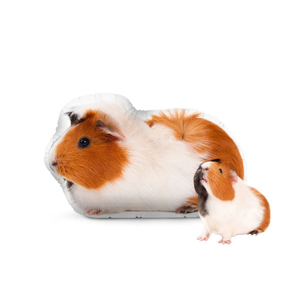 Custom Guinea Pig Pillow 8