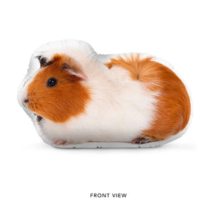 "Custom Guinea Pig Pillow 8"" 12"""