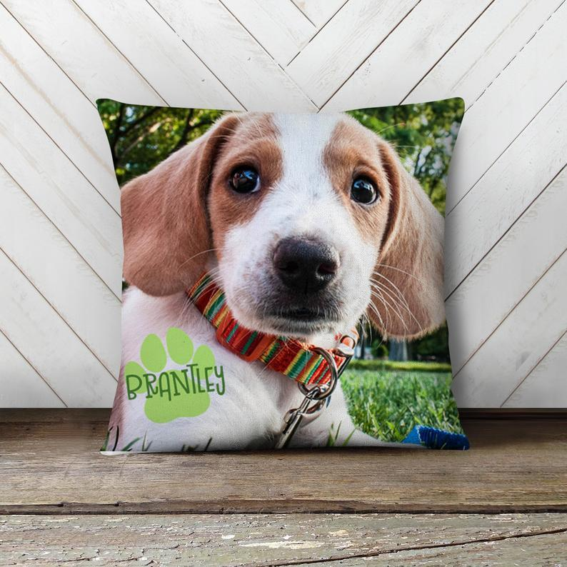 Custom Pet Photo Throw Pillow 15.75